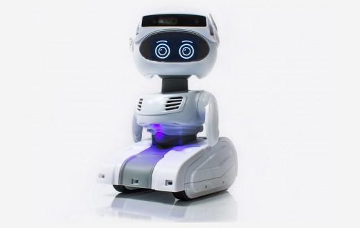 Misty II Professional Platform Robot